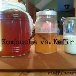Kombucha vs Kefir www.mindfulmomma.com