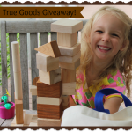 True Goods Giveaway via www.mindfulmomma.com