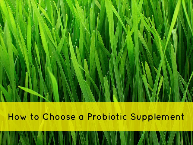 How to choose a probiotic supplement via mindfulmomma.com