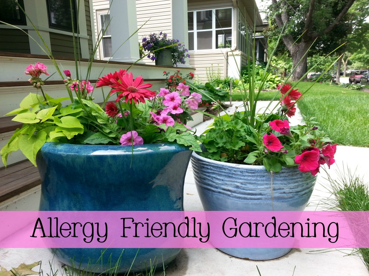 Allergy Friendly Gardening via mindfulmomma.com