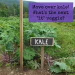 Which veggie will be the kale of 2015? via mindfulmomma.com