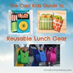 Cool Kids Guide to Reusable Lunch Gear via mindfulmomma.com