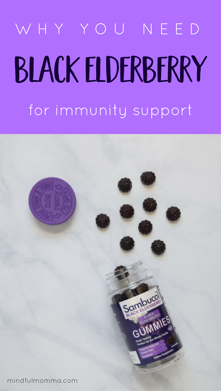 Learn why black elderberry extract is a great natural remedy for immune system support. | health remedies | #health #natural #remedies #ad #SambucolGummies  via @MindfulMomma