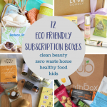 Top 12 Eco Friendly Subscription Boxes to Give & Get