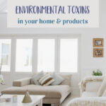 Environmental Toxins Health
