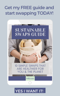 sustainable swaps guide