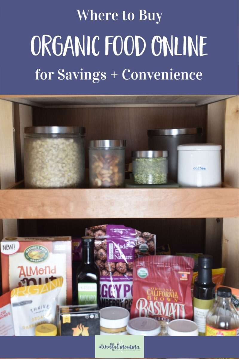 Discover the best places to buy organic food online - so you can buy healthy food for your family at the lowest prices and stick to your food budget! Review includes Thrive Market, Imperfect Produce, ButcherBox, Public Goods and more. via @MindfulMomma