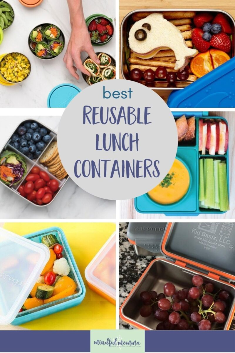 Find the best reusable lunch containers made of sustainable, non-toxic materials like stainless, glass and safe plastic, that will meet all your eco-friendly lunch needs. via @MindfulMomma