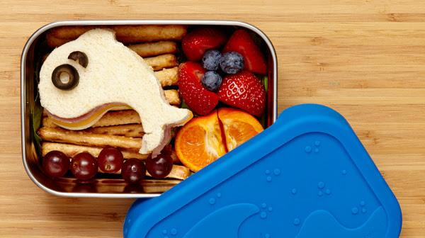 Splash Box reusable lunch container